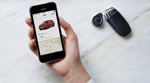 Car sharing for thewealthy